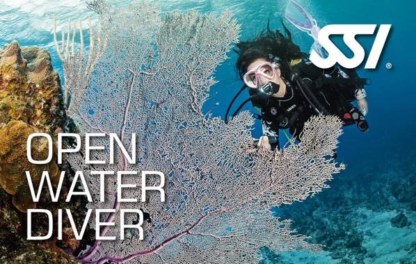 SSI オープンウォーターダイバー